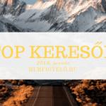 TOP keresők - 2019. január