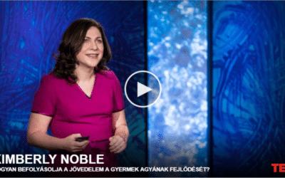 Kimberly Noble   Hogyan befolyásolja a jövedelem a gyermek agyának fejlődését?